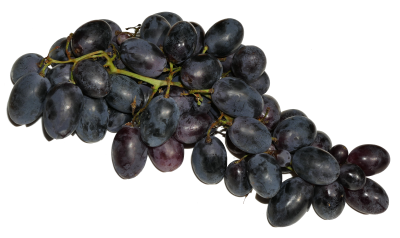 PNG images Grapes (1).png