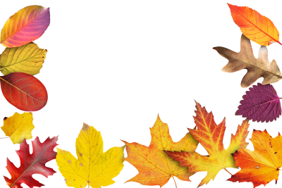 Autumn-941192 PSD file with small and medium free transparent PNG images