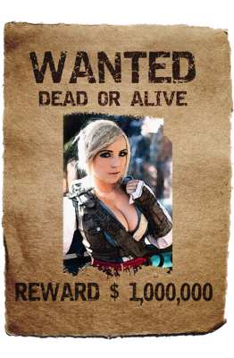 PNG images, PNGs, Wanted, Wanted poster,  (13).png