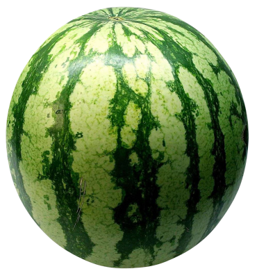 watermelon-74342_Clip.png