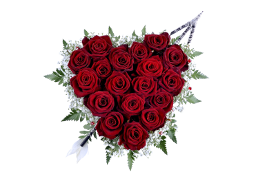Rose-520309 PSD file with small and medium free transparent PNG images