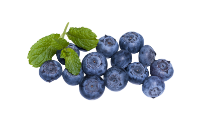 blueberry-873785_Clip.png