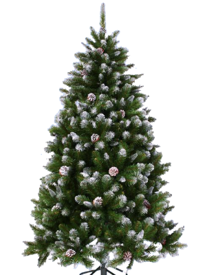 PNG images Christmas Tree (6).png