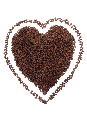 Bean-2484 PSD file with small and medium free transparent PNG images