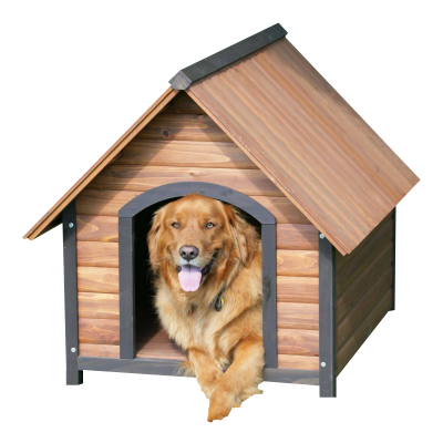 PNG images Kennel (2).png
