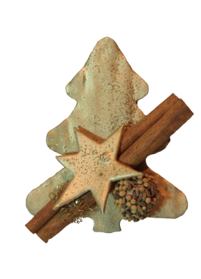 PNG images Christmas (45).png