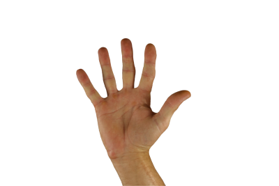 PNG images Hands (69).png
