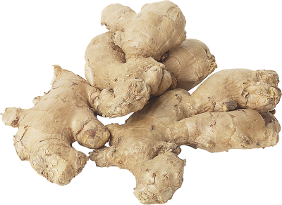 PNG images Ginger (3).png