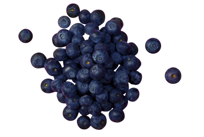 blueberries-933545_Clip.png