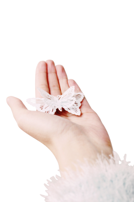 Butterfly PSD file with small and medium free transparent PNG images