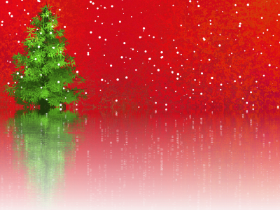 Christmas, Fir Tree, Christmas Tree, Christmas MotifChristmas Fir Tree Christmas Tree Christmas Motif.png