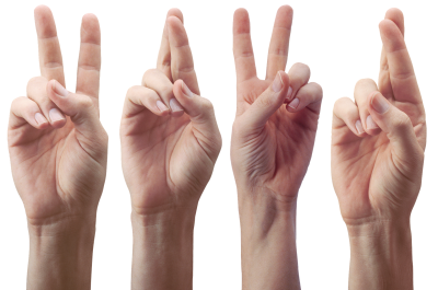 Hands, Fingers, The Gesture, Victory, GesturesHands Fingers The Gesture Victory Gestures.png