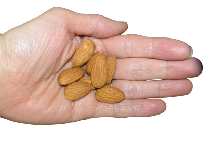 Almond PSD file with attached transparent PNG images