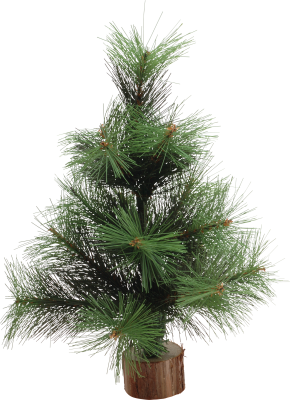 PNG images Christmas Tree (4).png