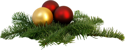 Isolated, Christmas Branch, Festival, End Of The YearIsolated Christmas Branch Festival End Of The Year.png
