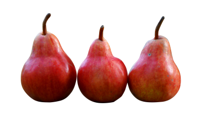 pears-1159014_Clip.png