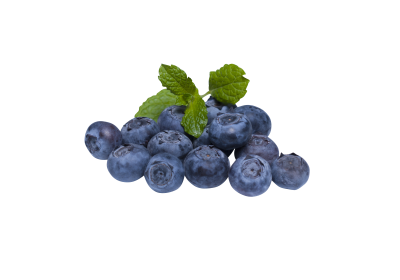 blueberry-873784_Clip.png