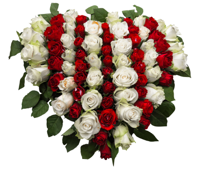 Roses-1040758 PSD file with small and medium free transparent PNG images