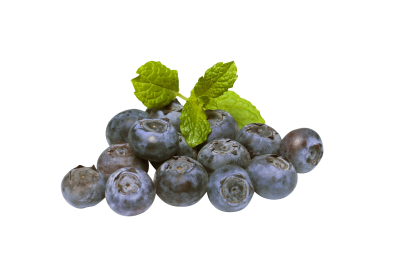 blueberries-894839_Clip.png