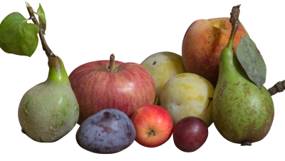 PSD files: Mixed fruit collection