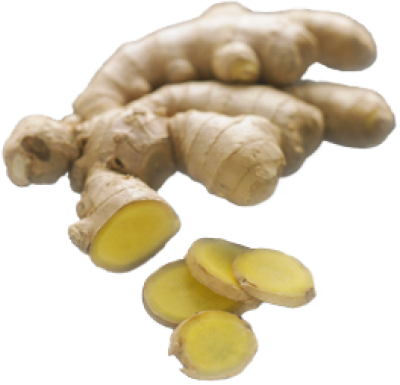 PNG images Ginger (11).png