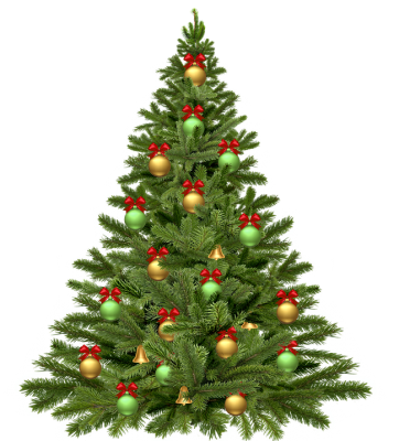 PNG images Christmas Tree (13).png
