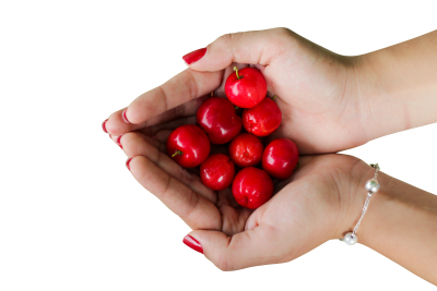 Cherry PSD file with attached free transparent PNG images