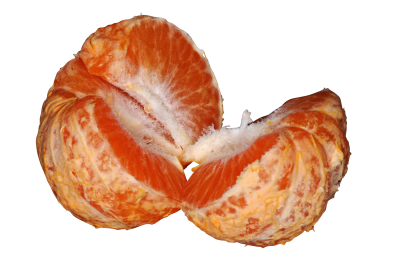 tangerine-623421_Clip.png